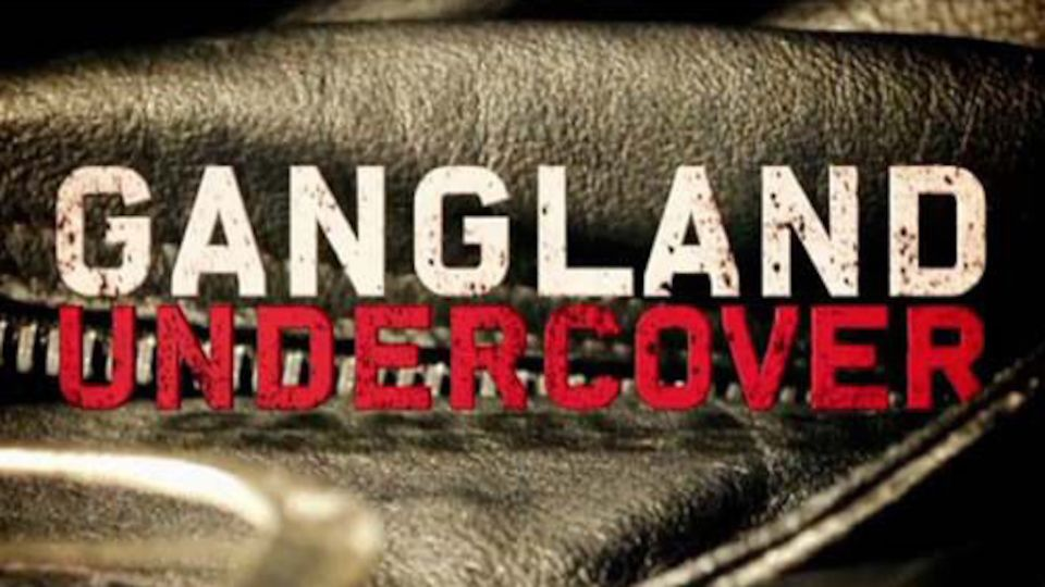Image for the TV series Gangland Undercover