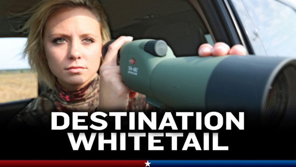 Image for the TV series Destination Whitetail