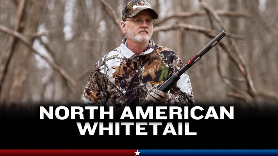Image for the TV series North American Whitetail