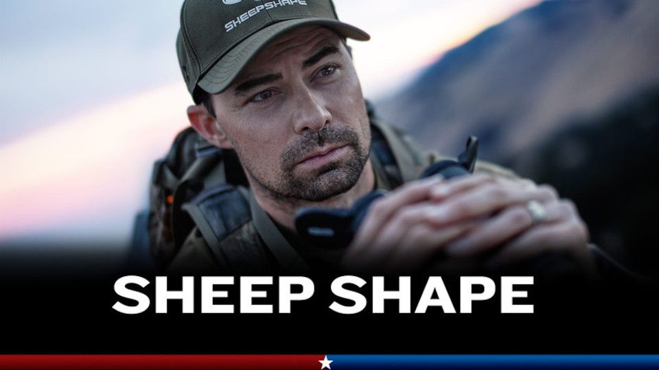 Image for the TV series Sheep Shape