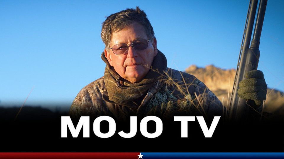Image for the TV series Mojo TV