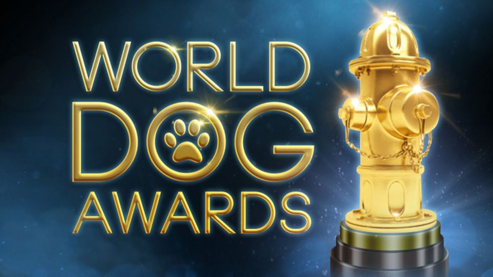 Image for the TV series The World Dog Awards