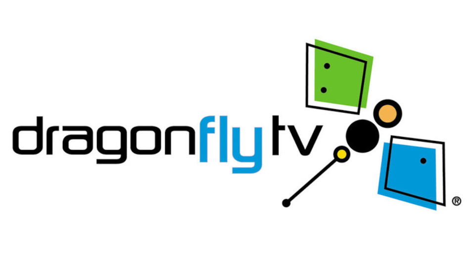 Image for the TV series DragonflyTV