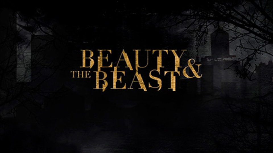 Image for the TV series Beauty and the Beast