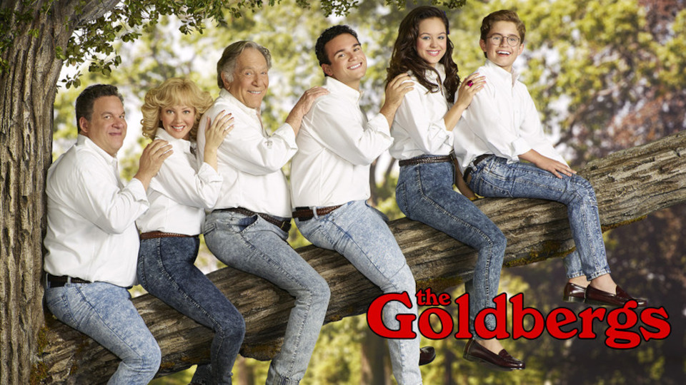 Image for the TV series The Goldbergs