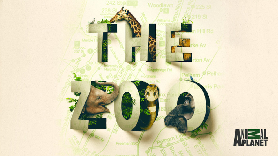 Image for the TV series The Zoo