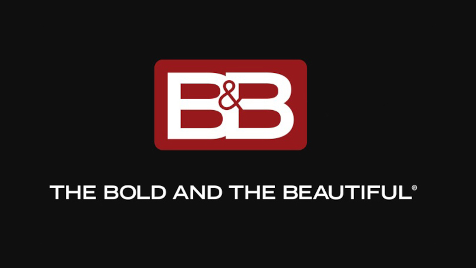 Image for the TV series The Bold and the Beautiful