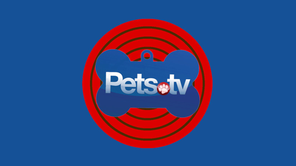 Image for the TV series Pets.TV