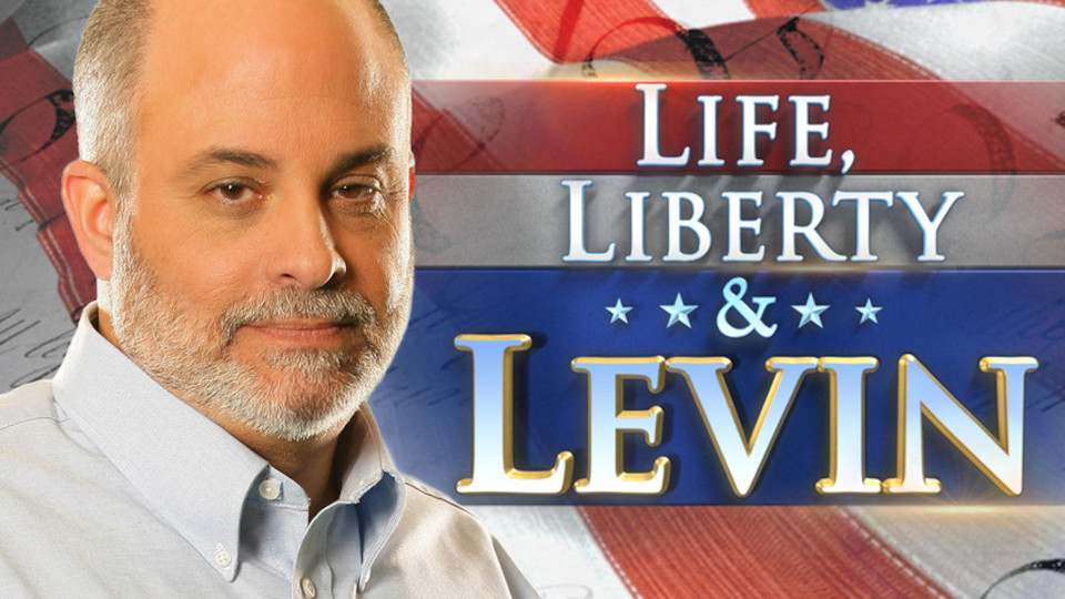 Image for the TV series Life, Liberty & Levin
