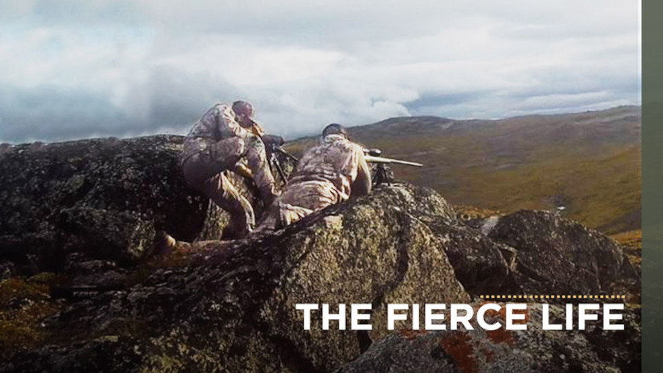 Image for the TV series The Fierce Life