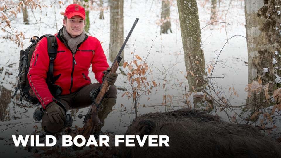 Image for the TV series Wild Boar Fever