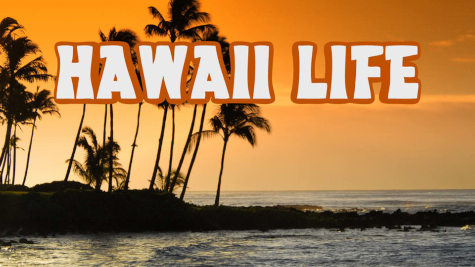 Image for the TV series Hawaii Life
