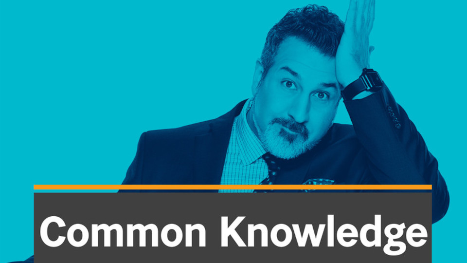 Image for the TV series Common Knowledge