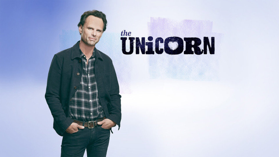 Image for the TV series The Unicorn