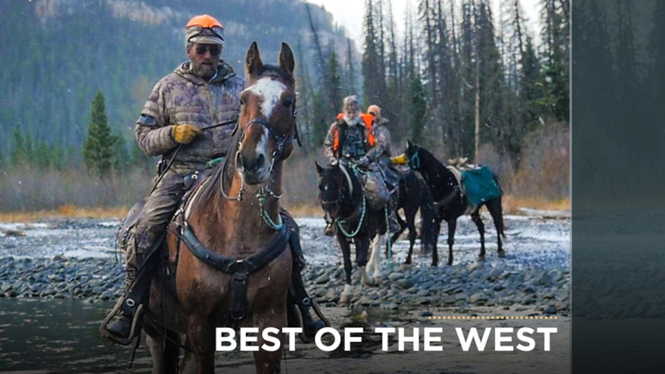 Image for the TV series Best of the West