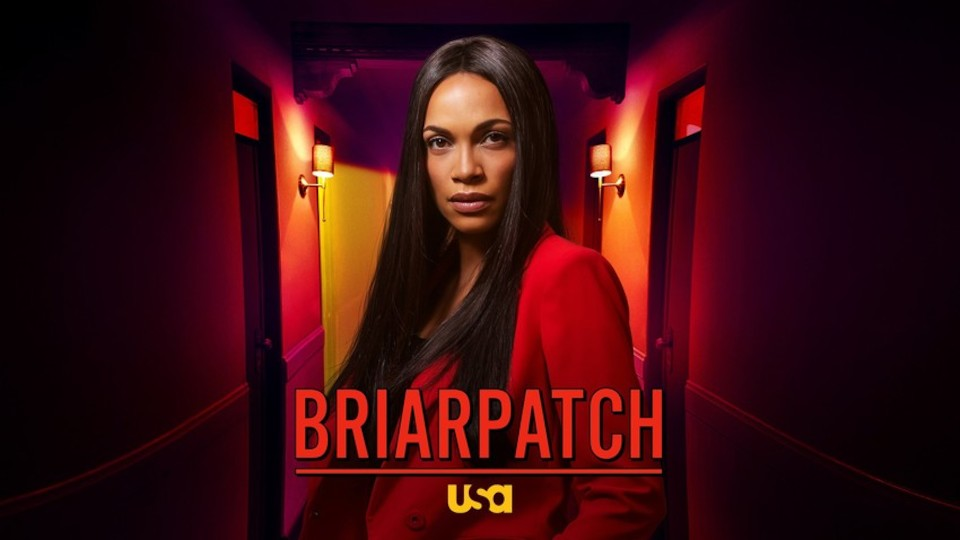 Image for the TV series Briarpatch
