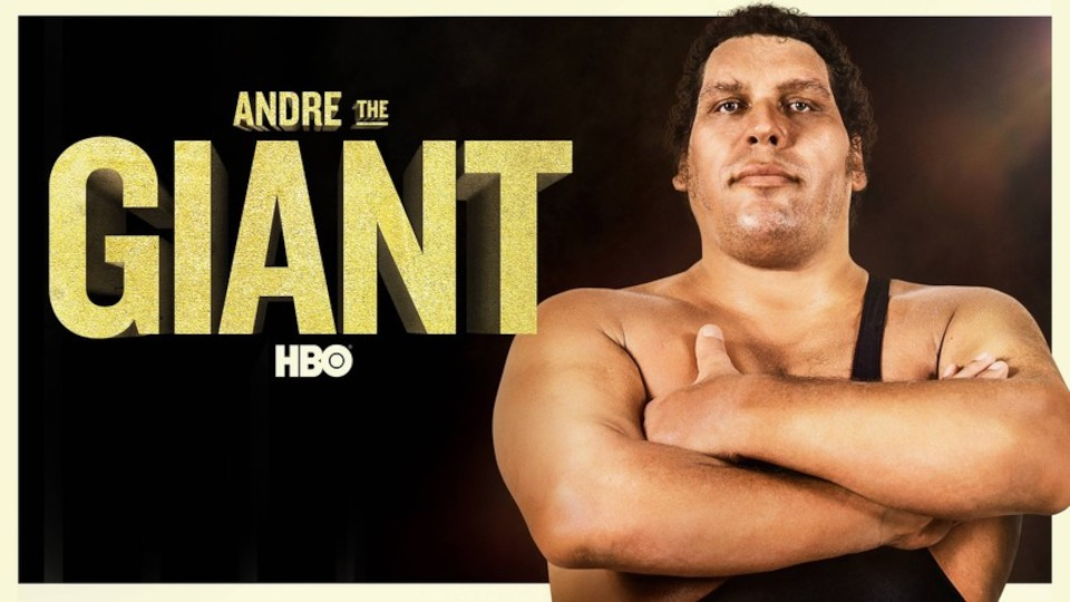 Image for the TV series Andre the Giant