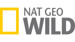 National Geographic Wild excites people's passion and will take you on a wild adventure through the best, most intimate encounters with wildlife ever seen on television. Explore the animal kingdom with us and discover things you never knew before, or rediscover your favorite animals!